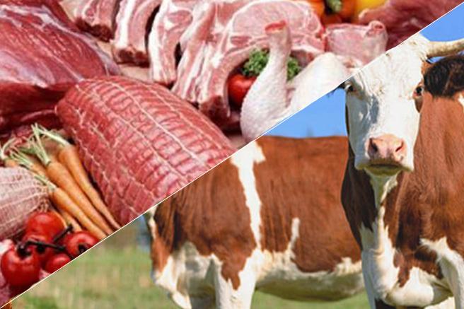 Αναλύσεις Τροφίμων και Ζωοτροφών